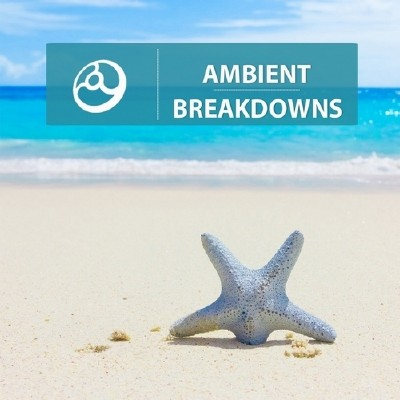 Ambient Breakdowns (2014)